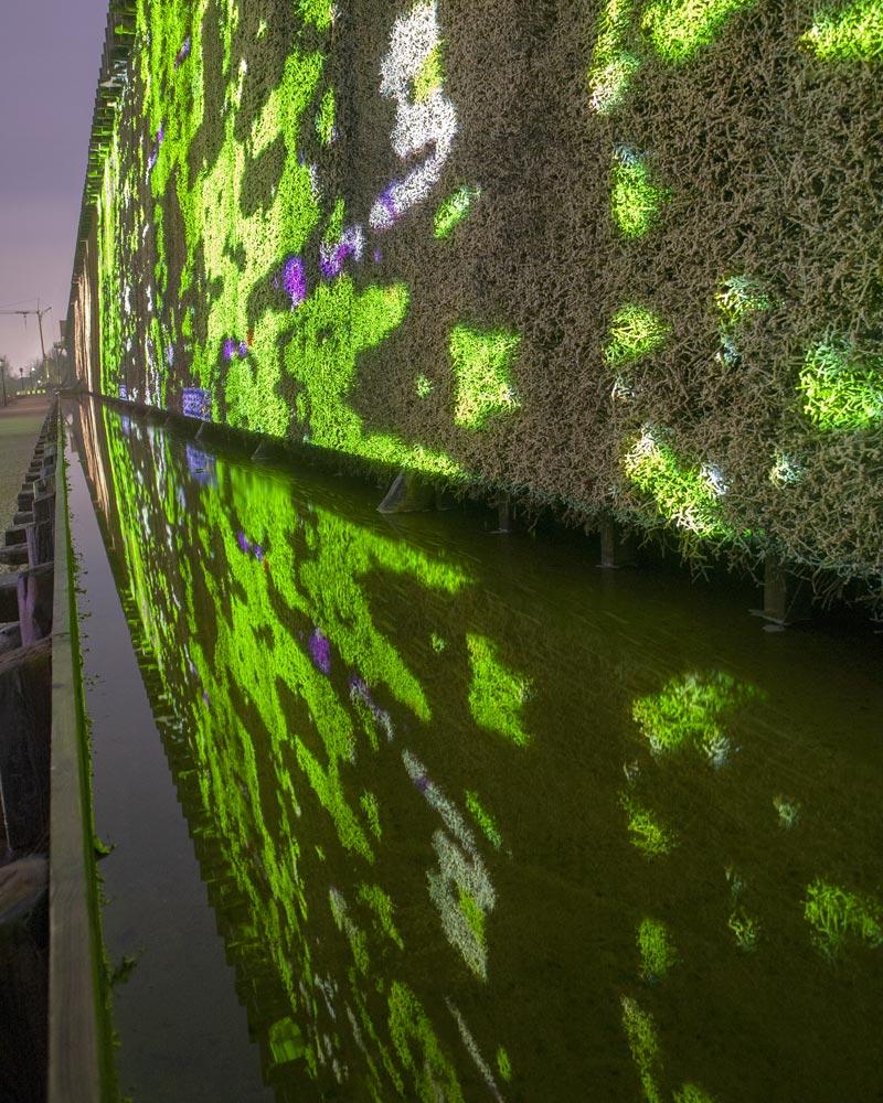 Flow10 – 1. Sichtlicht Projektionsbiennale