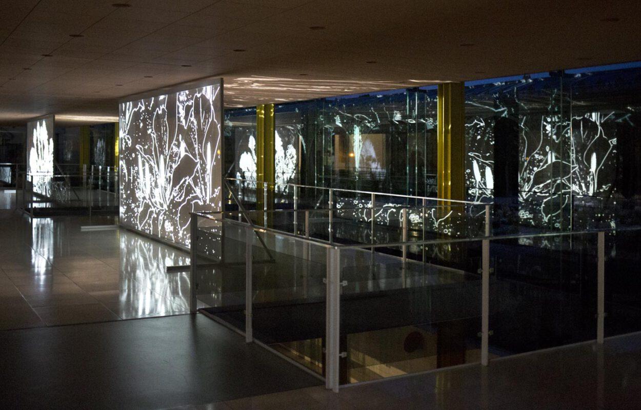Greenhouse08 – Kunstfestspiele Herrenhausen