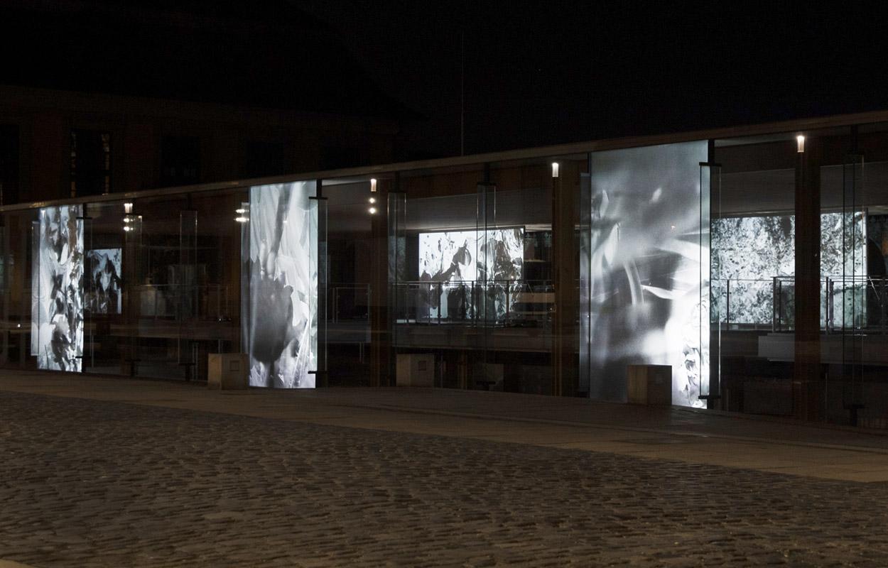 Greenhouse11 – Kunstfestspiele Herrenhausen